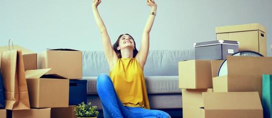 Que pr voit le projet de loi logement maison du conseil - Locations meublees non professionnelles ...